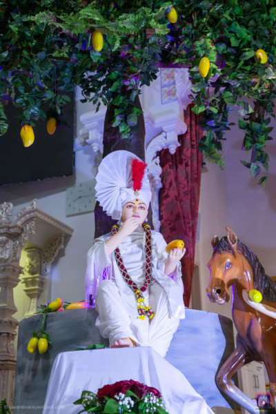 Divine darshan of Lord Shree Swaminarayan seated underneath the mango tree