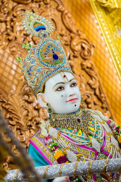 Divine darshan of Lord Shree Swaminarayan holding a large colour spray