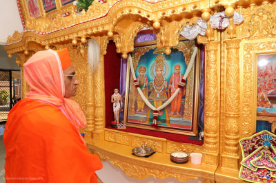 Divine darshan of the Lord and His Divine Holiness Acharya Swamishree