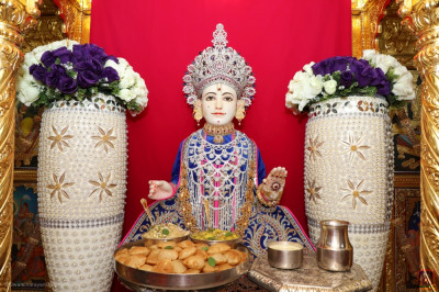 Divine darshan of Lord Shree Swaminarayan dining on lunch