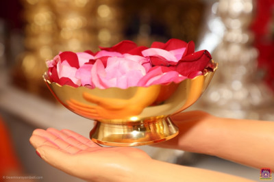 Fresh carefully selected flower petals are offered at the divine lotus feet of the Lord
