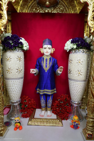 Divine darshan of Lord Shree Swaminarayan at night