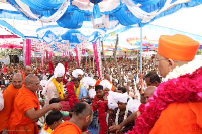 Disciples put a long rose garland on Acharya Swamishree Maharaj