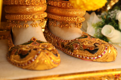 The divine lotus feet of the Lord