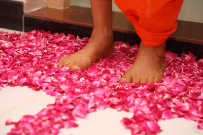 Divine darshan of His Divine Holiness Acharya Swamishree Maharaj stood on the flower petals