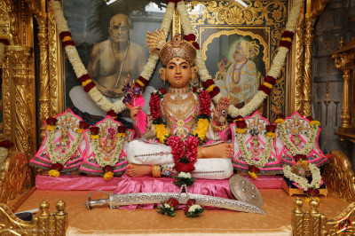 Divine darshan of Shree Sahajanand Swami