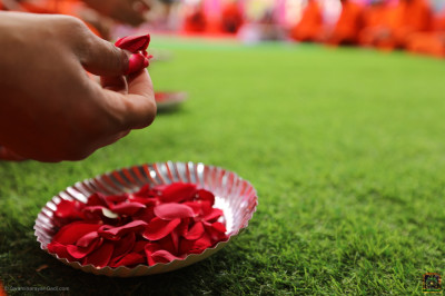The plate of flower petals used in maha pooja