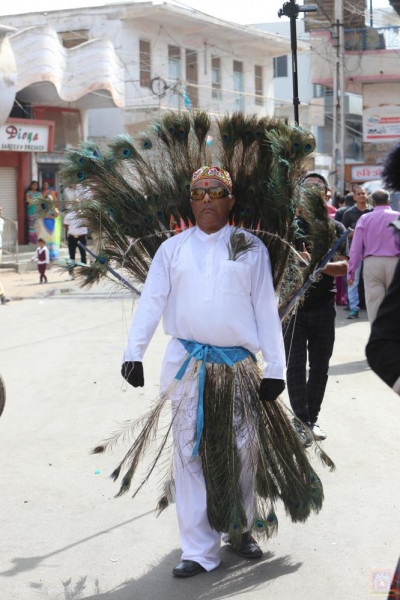A disciple dressed as a peacock performs dances throughout the grand procession