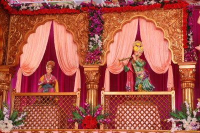 Divine darshan of Lord Shree Swaminarayan performing various actions to the delight of all