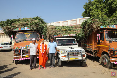 His Divine Holiness Acharya Swamishree Maharaj blesses disciples who have sponsored the fodder
