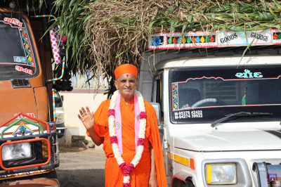 Divine darshan of His Divine Holiness Acharya Swamishree Maharaj with the trucks of fodder