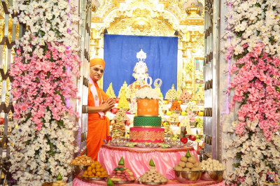Divine darshan of His Divine Holiness Acharya Swamishree Maharaj with Lord Shree Swamianrayan