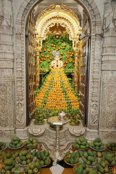 Divine darshan of Lord Shree Swaminarayan at the centre of a mountain of delicious mangos
