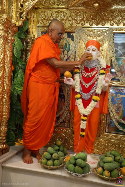 His Divine Holiness Acharya Swamishree Maharaj offers delicious mango to Jeevanpran Shree Muktajeevan Swamibapa