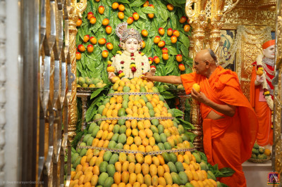 Divine darshan of Lord Shree Swaminarayan with His Divine Holiness Acharya Swamishree Maharaj