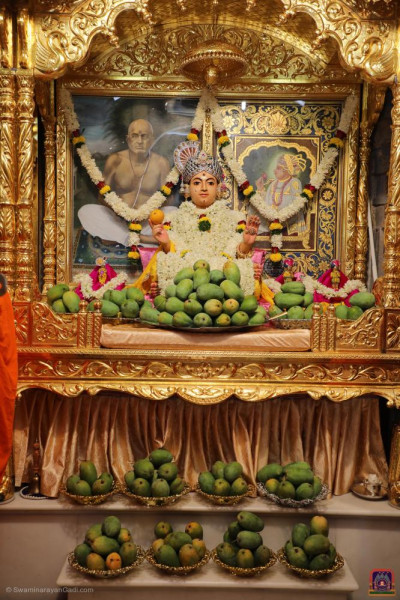 Divine darshan of Shree Sahajanand Swami with mountains of mangos