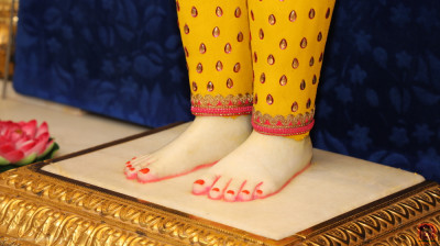 Divine darshan of Lord Shree Swaminarayan's divine lotus feet