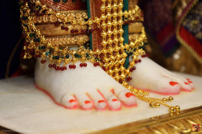 Divine darshan of the divine lotus feet of the Lord
