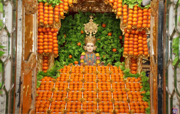Orange Fruit Utsav at Maninagardham and Bhuj